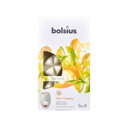 Płatki zapachowe z wosku FEEL HAPPY (mango i bergamotka) True Moods (6 sztuk)