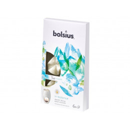 Płatki zapachowe z wosku IN BALANCE (biała herbata i liście mięty) True Moods (6 sztuk)