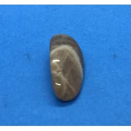 Kamień księżycowy - bębnowany 20 x 15 mm