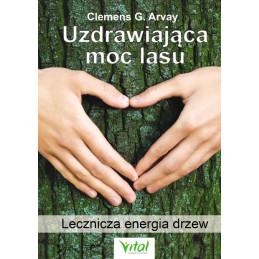 uzdrawiaj  ca moc lasu
