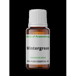 Wintergreen (Golteria ) -...